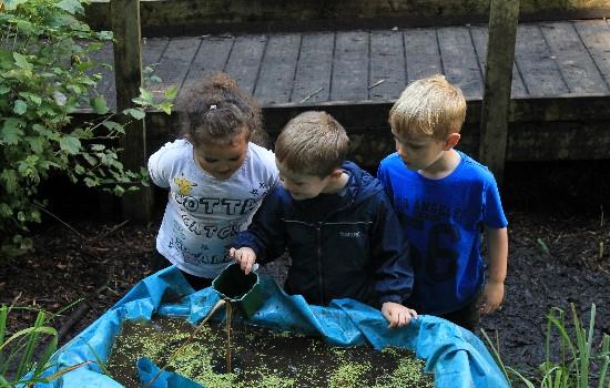 Kids Adventures Frog Hunting